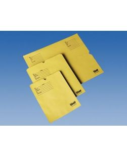 Film Filing Envelopes, 10 x 12, 500/bx