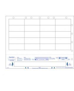 Adult Wristband & 20 Labels/ File Holes, 8½ x 11, 250/pkg, 4 pkg/bx